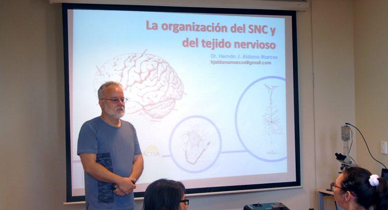 neurodi2.jpg